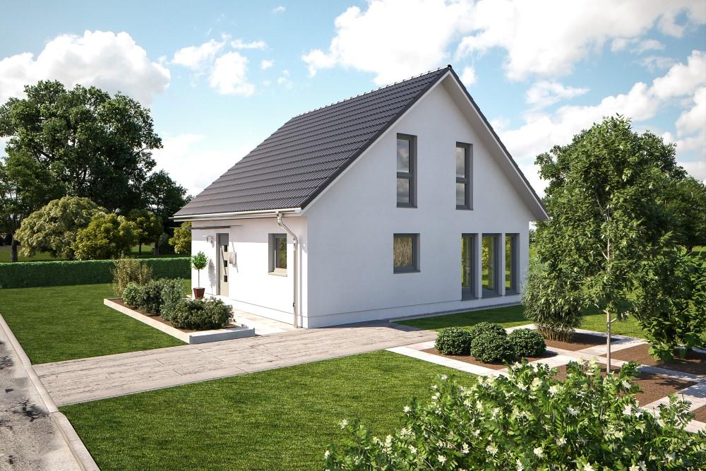 b renhaus einfamilienhaus esprit 112 b renhaus. Black Bedroom Furniture Sets. Home Design Ideas